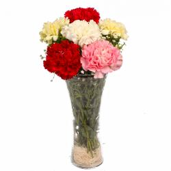 Six Assorted Carnations in Classic Vase