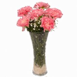 Six Pink Carnations in Classic Vase