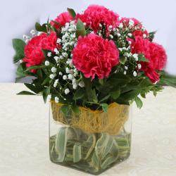 Six Pink Carnations in Vase