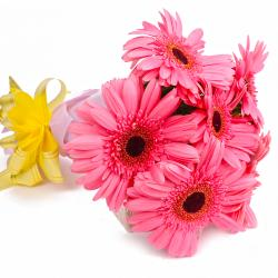 Six Pink Gerberas with Tissue Wrapping
