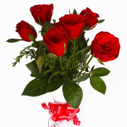 Six Red Roses with Tissue Wrapped