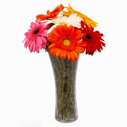 Six Stem of Diffrent Colored Gerberas in Vase