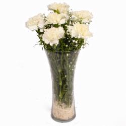 Six White Carnations in Vase