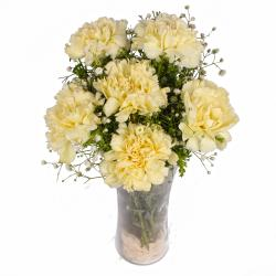 Six Yellow Carnations in Classic Vase
