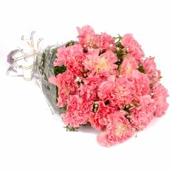 Sixteen Pink Carnations Hand Tied Bunch