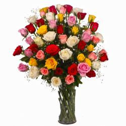 Sixty Colorful Roses in a Vase