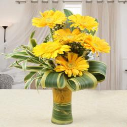 Stylish Yellow Gerberas in a Vase
