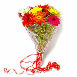 Ten Colorful Gerberas Bouquet