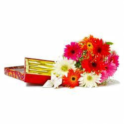 Ten Mix Color Gerberas Bouquet with Kaju Katli Box