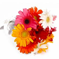 Ten Mix Color Gerberas Hand Tied Bouquet