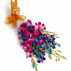 Ten Mix Color Orchids Hand Tied Boquet with Tissue Packing