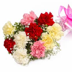 Ten Multi Color Carnations in Cellephane Wrapped