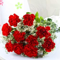 Ten Red Carnation Bouquet with Cellophane Wrapping