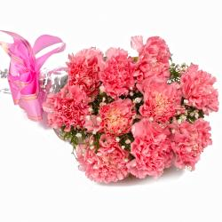 Ten Soft Pink Carnations Cellephane Wrapped
