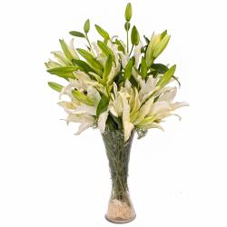Ten White Lilies arranged in a Classical Glass Vase