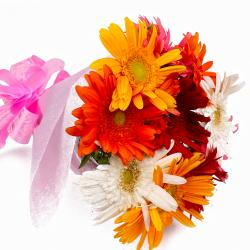 Tissue Wrapped 10 Mix Gerberas Bouquet Online