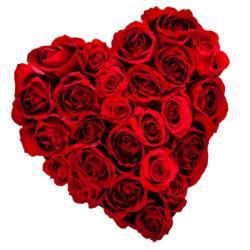 True Heart with Pure Feelings