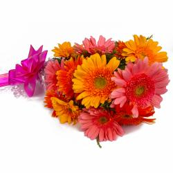Twelve Pink and Yellow Gerberas Hand Tied Bunch