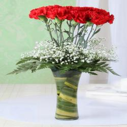 Twelve Red Carnation in Glass Vase