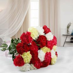 Twenty Five Mix Carnations Bouquet