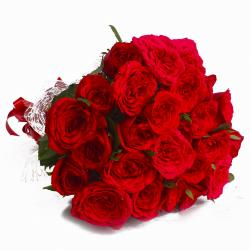Twenty Four Red Roses in Cellephane Wrapped