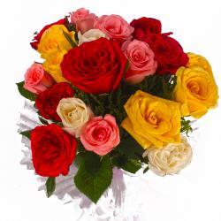 Twenty Multi Roses in Tissue Wrapped