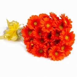 Twenty Orange Gerberas Bouquet with Cellophane Packing
