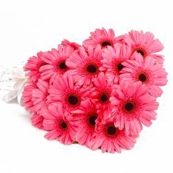 Twenty Pink Gerberas Bouquet Online