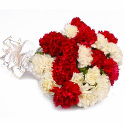 Twenty Red and White Carnations Bunch