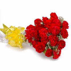 Twenty Red Carnations Bouquet Cellophane Wrapped