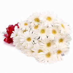 Twenty White Gerberas Hand Tied Bouquet