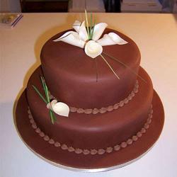 Two Tier Chocolate Fresh Cream Cake