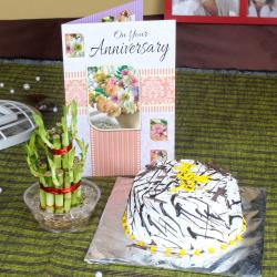 Vanilla Cake and Good Luck Plant with Anniversary Card