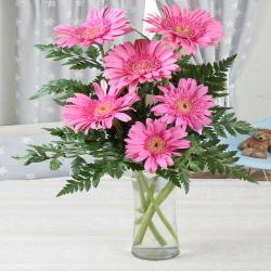 Vase of Six Pink Gerberas