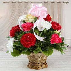 Basket Arrangement of Mix Carnations