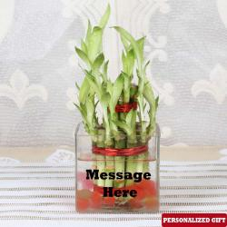Customized Glass Vase for New Delhi