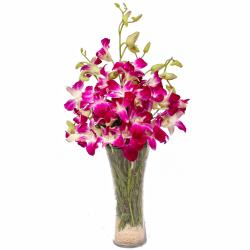Glass Vase of 6 Purple Orchids