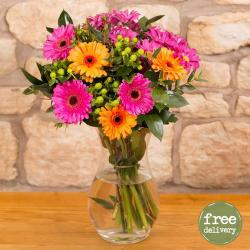 Ten Mix Gerberas In Vase