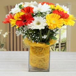 Vase of Mixed Gerberas Arrangement for Warangal